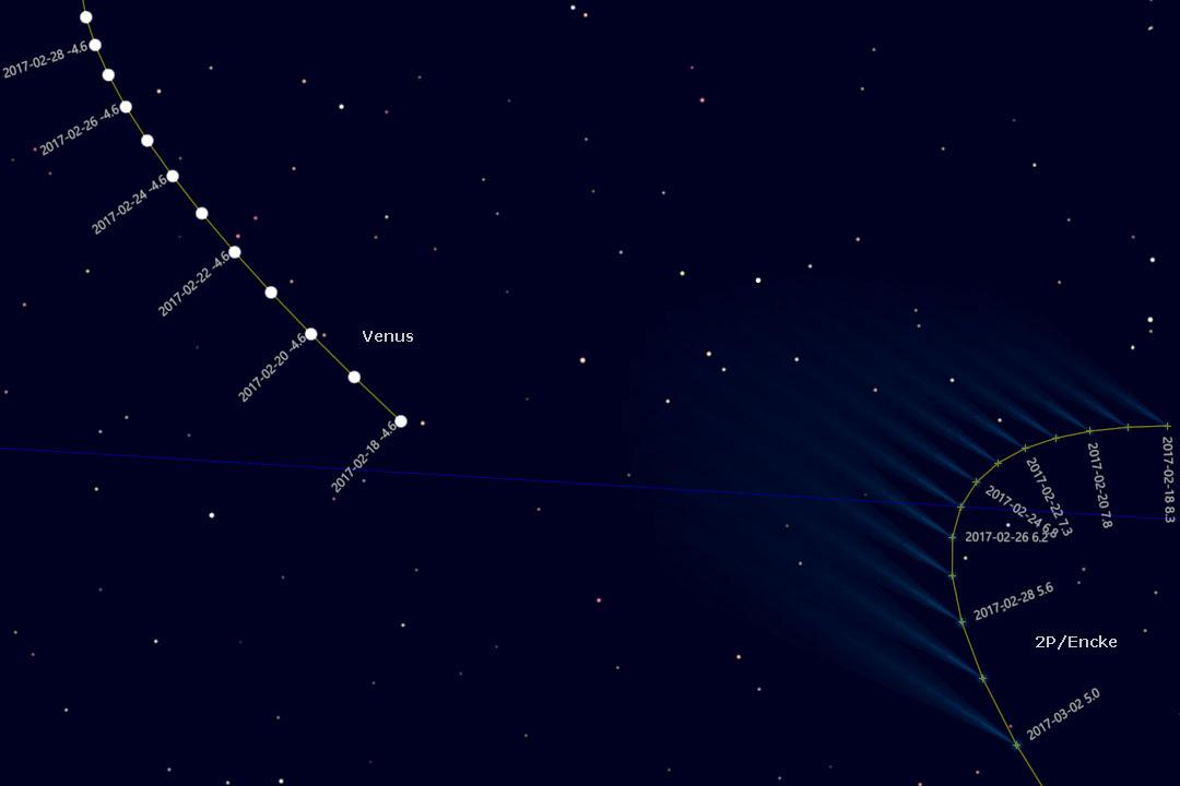 Westlich der hell strahlenen Venus können wir den Kometen beobachten (Cartes du Ciel). Die Schweifdarstellung ist nur schematisch und entspricht nicht den tatsächlichen Gegebenheiten.